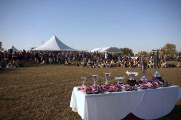 2010: Awards