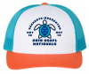 2019 Nationals Cap